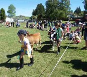 Pet Parade Pet Day 2015 20 opt